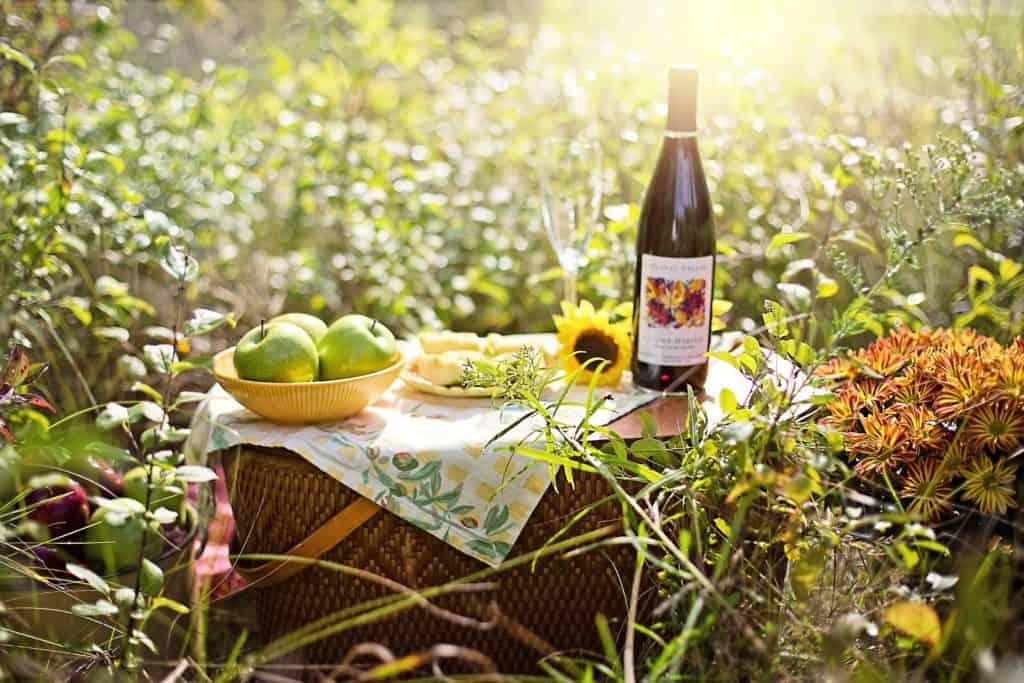 erlangen-orte-zum-picknicken